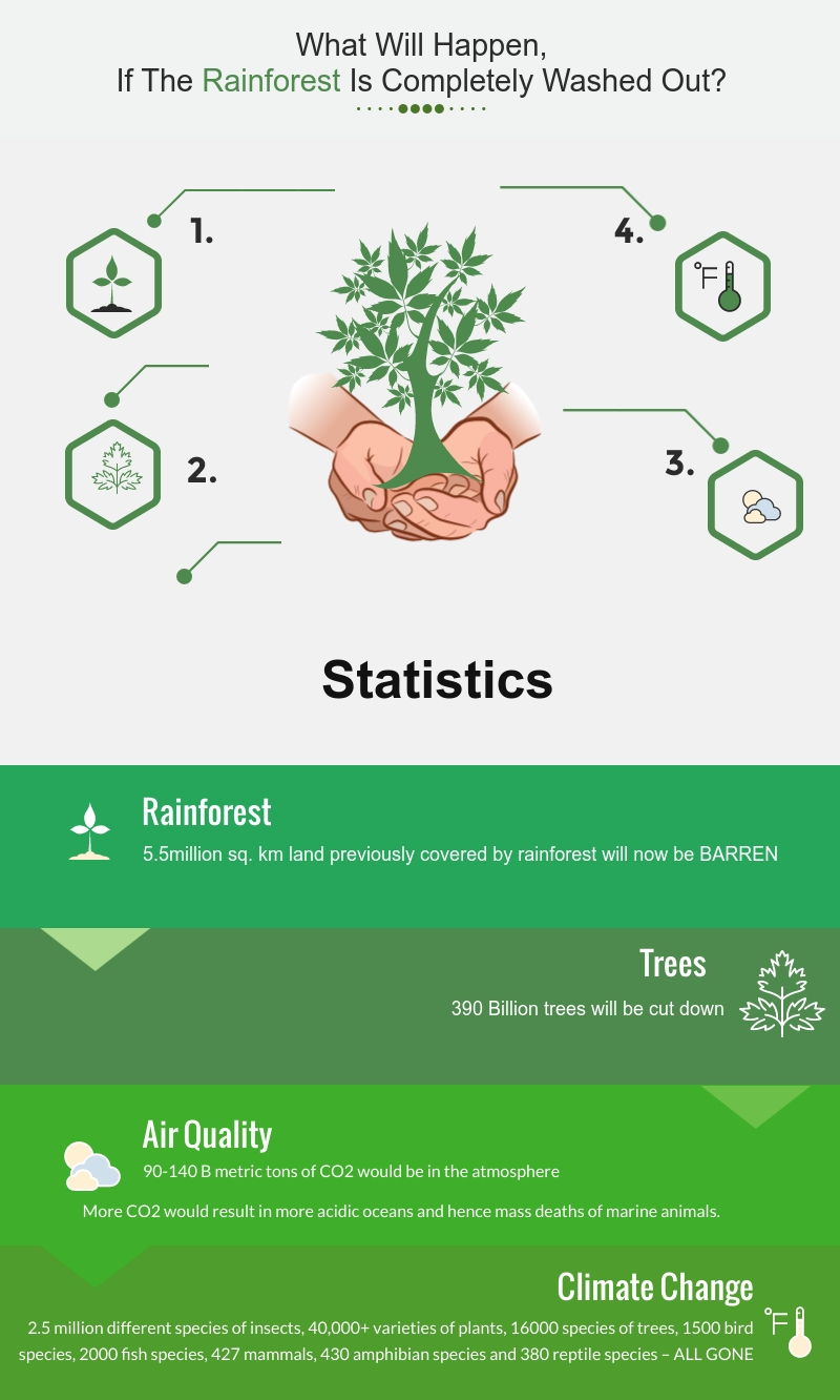 AMAZON RAINFOREST STATISTICS